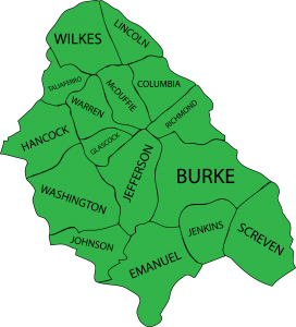 Illustration of the 16 counties that Walton Options serves in Georgia.
